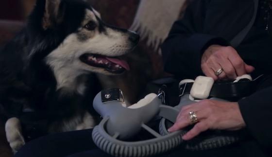 3d printer derby the dog 20150320 5