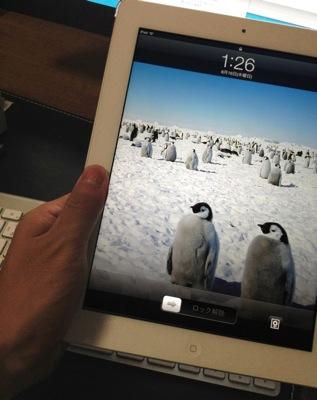 Ipad mini 20120816 4